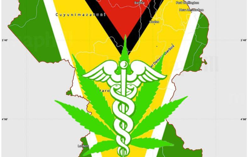 Medical Marijuana Globally: Stanislav Shamayev, Esq. in Guyana