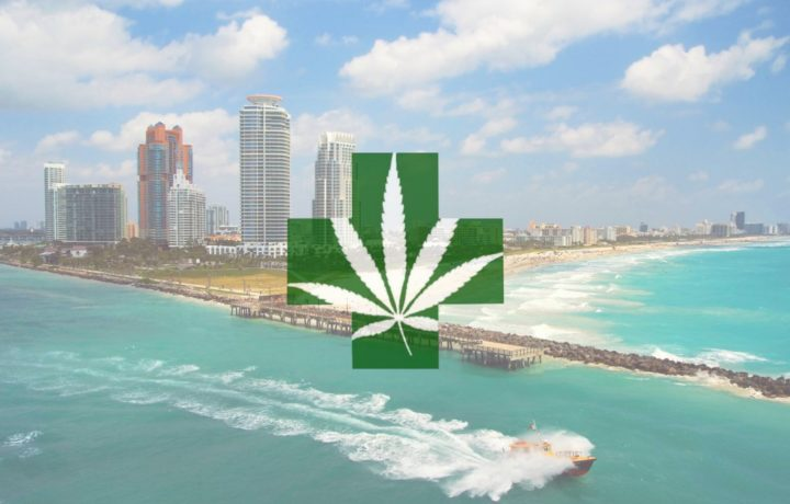 South Beach Will Allow Medical Marijuana Dispensaries